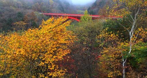 黄葉映える赤い橋