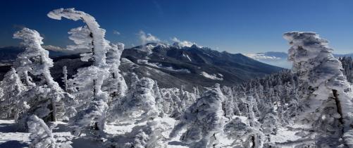 樹氷林の彼方に赤岳山群