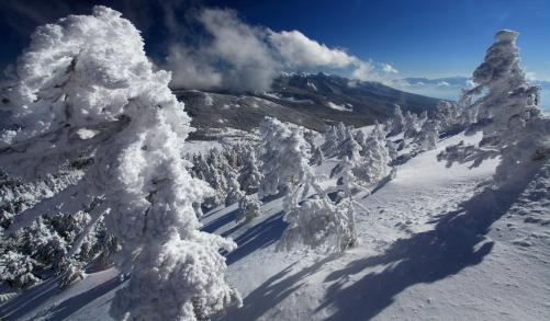 樹氷と南八ヶ岳