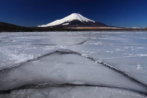 平野から望む富士山