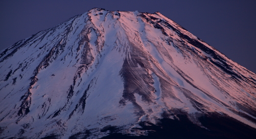 バラ色に染まる富士