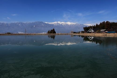 部奈地区の大きなため池と中央アルプス