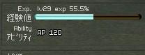 1007136.jpg