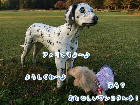 20141010222654.jpg