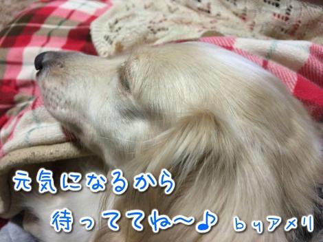 20141110010428.jpg