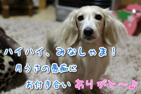 20141203182135.jpg