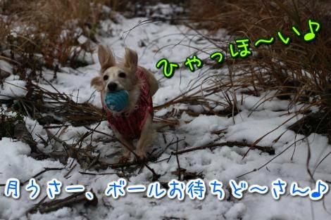 20141203185341.jpg