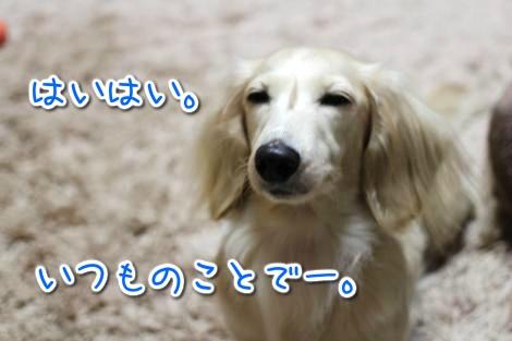 20141211240035.jpg