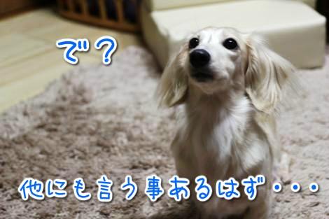 20141211241814.jpg