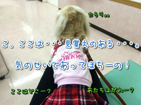 20141212225959.jpg