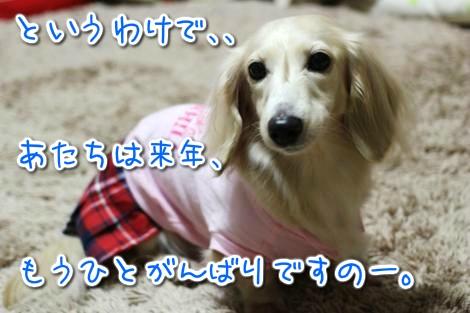 20141212230817.jpg