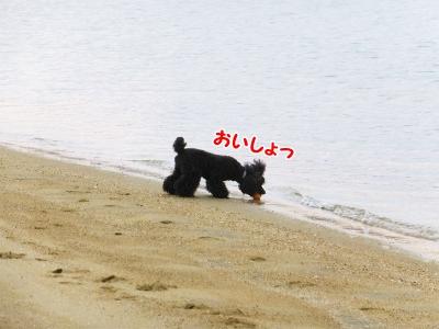 059_201401252125137da.jpg