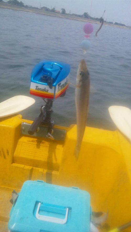 釣りに使う留具のテスト