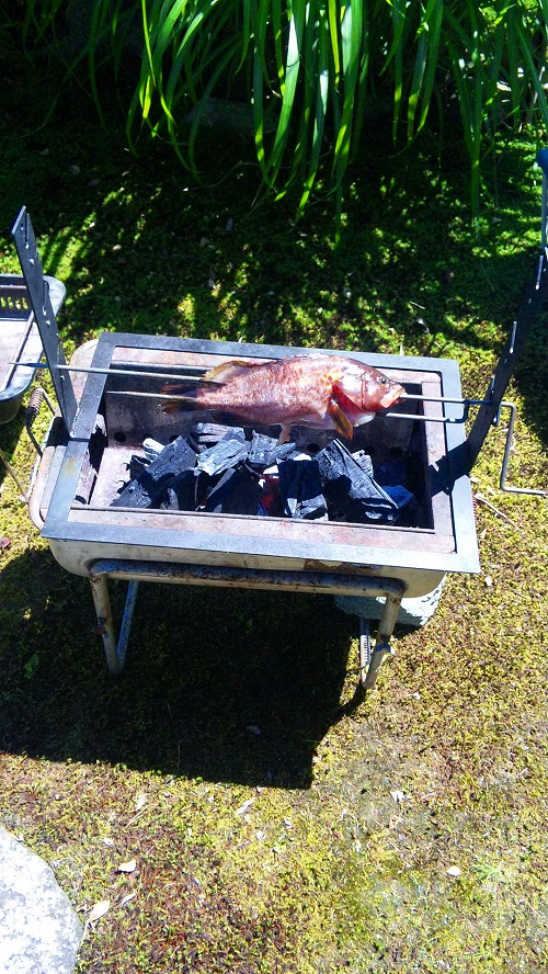 釣りにプニョット留具使用