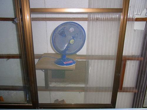 熱夏に脱エアコン宣言
