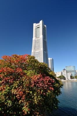 20121110SDSC_5531.jpg