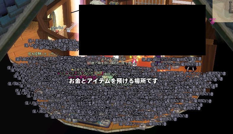 mabinogi_2010_12_30_003.jpg