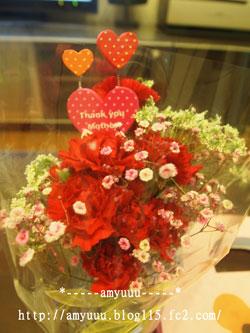 2011hahanohiflowers.jpg
