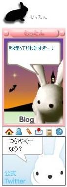 blogpet5.jpg