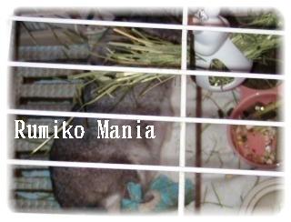 rumikomania+003_convert_201010061549.jpg