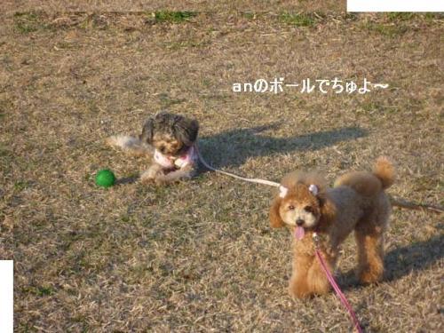 an縺ョ縺ァ縺兩convert_20101212084642