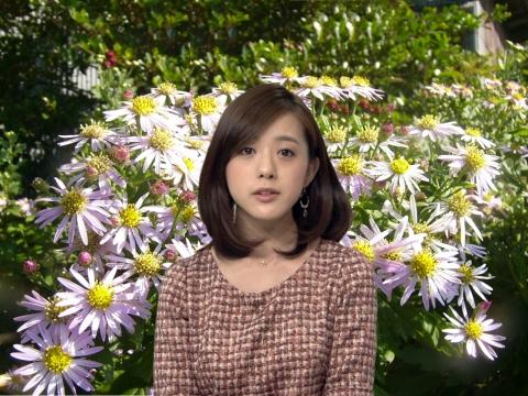 Furuya-1104W.jpg