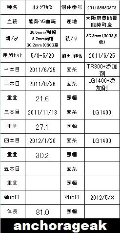 2011866533T3yasukong81種親card