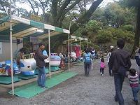 小田原城址公園 (3)