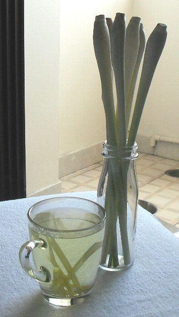 レモングラス水