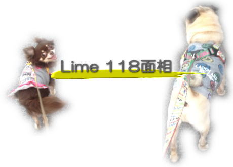 image01_20130922231754fab.jpg