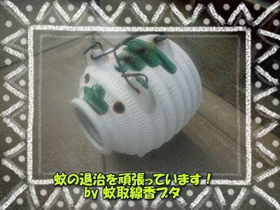 image1_20110630195127.jpg