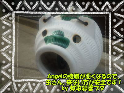 image2_20110630195127.jpg