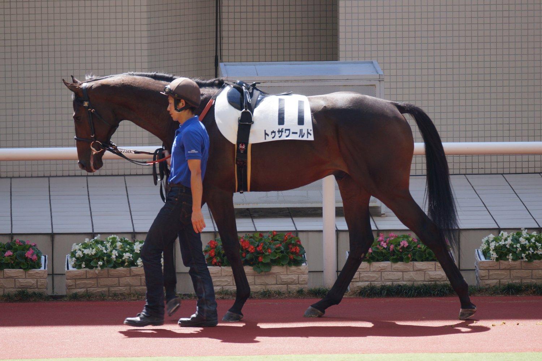 トゥザワールド 新馬 1