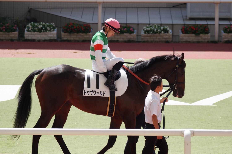 トゥザワールド 新馬 2