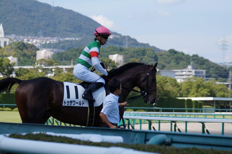 トゥザワールド 新馬 3