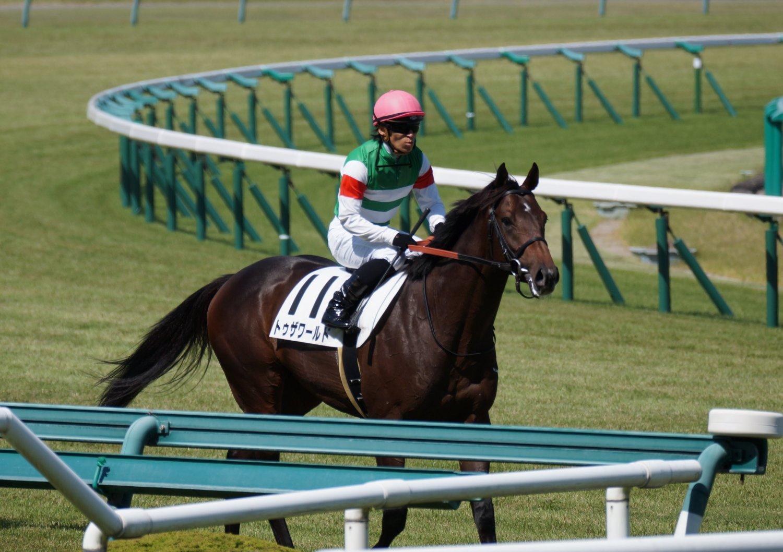 トゥザワールド 新馬 6