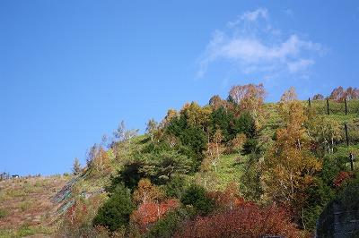 軽井沢2013 047