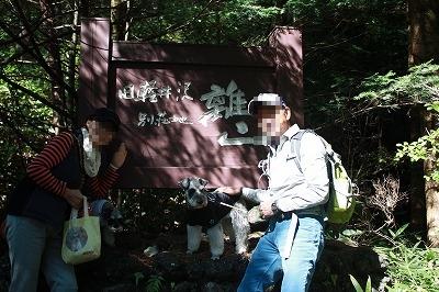 軽井沢2013 082