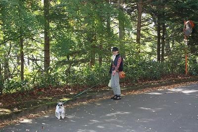 軽井沢2013 088