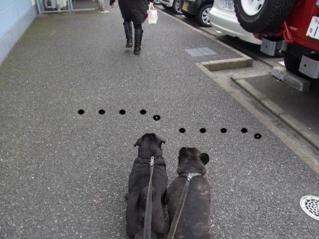 11/29 横浜ベイサイド