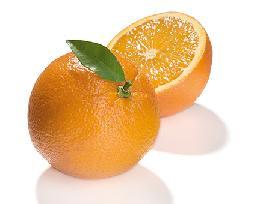 1012 orange