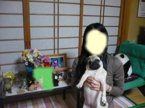 snap_aoiakari_2010114215245.jpg