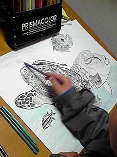 ふつうのおえかきペンに見える無印良品の「おえかきペン・陶磁器用」 その名の通り、陶磁器のお皿やカップなどに直接お絵描きができる今話題のペンなのです!