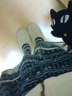 catskirt.jpg