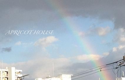 141101虹