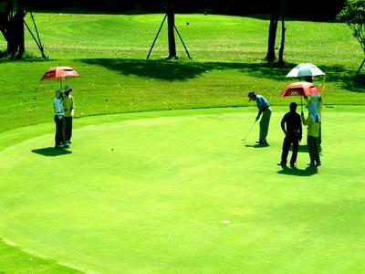 タイ ゴルフ
