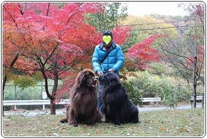 2010_1117oyama0001b.jpg