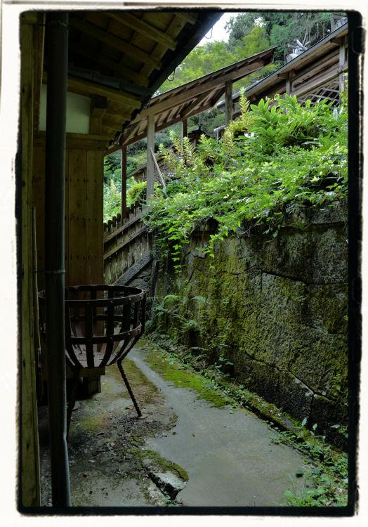 inakamichi-10.jpg