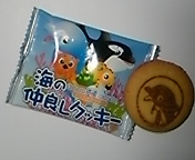 DVC00090  クッキー