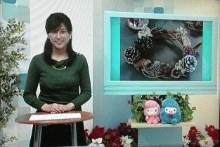 ケーブルテレビ (2)